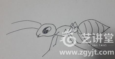 一群蚂蚁搬东西简笔画内容图片展示